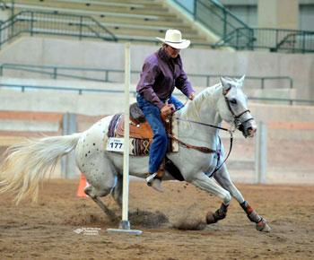 Brag Rodeo – KJBridgeman